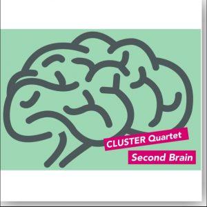 Cluster 2 brain
